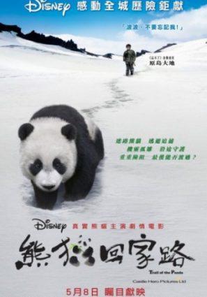 След панды