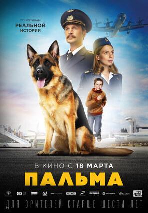 Постер фильма Пальма